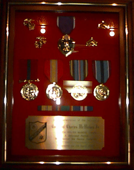 Medals earned by both Marines