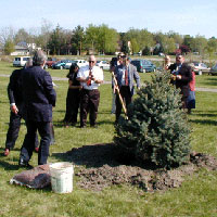 Tree Planting For LCpl Judge and Cpl McMahon: Dwight McDonald finished planting Cpl McMahon's Tree.